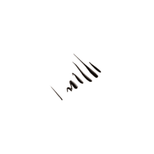 خط چشم مایع این لی (INLAY )